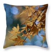 Acer Autumn Throw Pillow