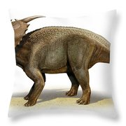 Achelousaurus Horneri, A Prehistoric Throw Pillow