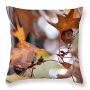 Acorn Hull Throw Pillow