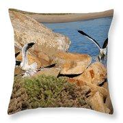 Acrobats Throw Pillow