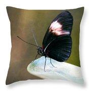 Acrophobia Throw Pillow