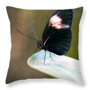 Acrophobia Throw Pillow