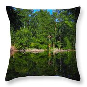 Across The Lake Throw Pillow