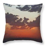Across The Plains Throw Pillow