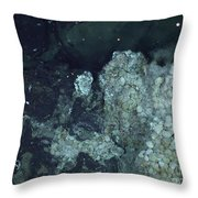 Active Hydrothermal Vent Throw Pillow