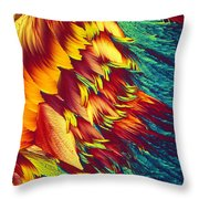 Adenosine Triphosphate Throw Pillow by Michael W. Davidson