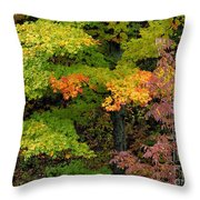 Adirondack Autumn Throw Pillow
