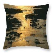 Aerial Shot, Tangier Island, Chesapeake Throw Pillow