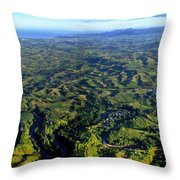 Aerial View Of The Nadi River Winding Throw Pillow