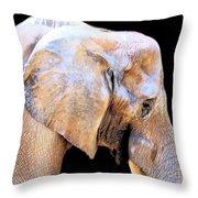 African Babe Throw Pillow