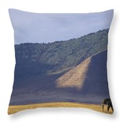 African Elephant In Ngorongoro Crater Throw Pillow