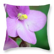 African Violet Flower Throw Pillow