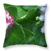 African Violets Intertwined I Throw Pillow