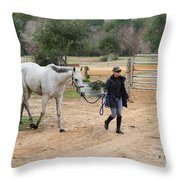 After The Day's Ride Throw Pillow