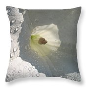 After The Rain..datura Innoxia Throw Pillow
