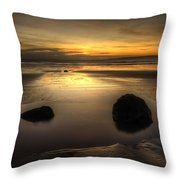 After Tide Out Throw Pillow
