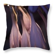 Afterglow Of Hosta Throw Pillow