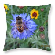 Afternoon Feeding Throw Pillow