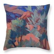 Afternoon Light - Santa Rosa Mountains Throw Pillow