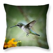 Afternoon Snack - Artist Cris Hayes Throw Pillow