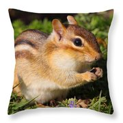 Afternoon Snack - Eastern Chipmunk  Throw Pillow