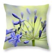 Agapanthus Throw Pillow