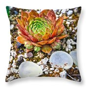 Agates And Cactus Throw Pillow