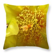 Agave 2010 Throw Pillow