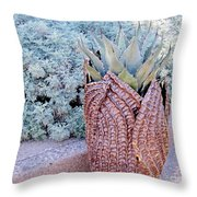 Agave Blues Throw Pillow