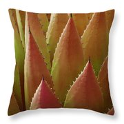 Agave Yellow Pink Throw Pillow