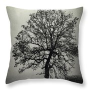 Age Old Tree Throw Pillow