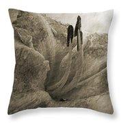 Aged Daylily Throw Pillow