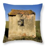 Aged Hut In Auvergne. France Throw Pillow by Bernard Jaubert