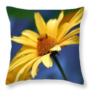 Aging Beauty Throw Pillow
