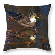 Ahh Sunset Throw Pillow
