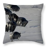 Air Delivery Cargo Is Released Throw Pillow