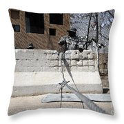 Airman Stands Post To The Entry Control Throw Pillow