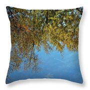 Airplane Reflections Throw Pillow