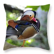 Aix Galericulata Throw Pillow