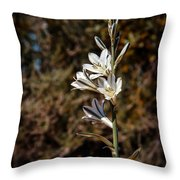 Ajo Lily Throw Pillow