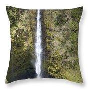 Akaka Falls Iv Throw Pillow