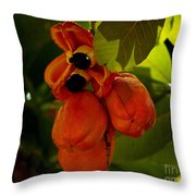 Akee Throw Pillow