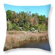 Alabama Bayou In Autumn Throw Pillow