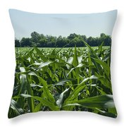 Alabama Field Corn Crop Throw Pillow
