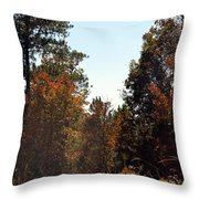 Alabama Mountainside October 2012 Throw Pillow