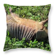 Alabama Road Kill Throw Pillow