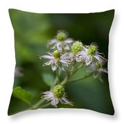 Alabama Wild Blackberries In The Making Throw Pillow