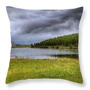 Alaki Lake Near Eureka Throw Pillow
