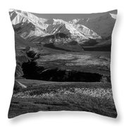 Alaska Valley Throw Pillow