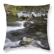 Alaskan Brook Throw Pillow